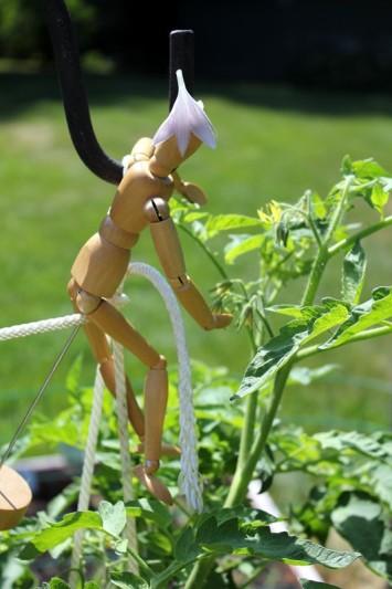Tomato plant, dummy