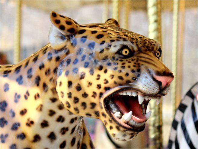 leopard1©Virginia Spencer, thepurpledogpaintingblog, 2013