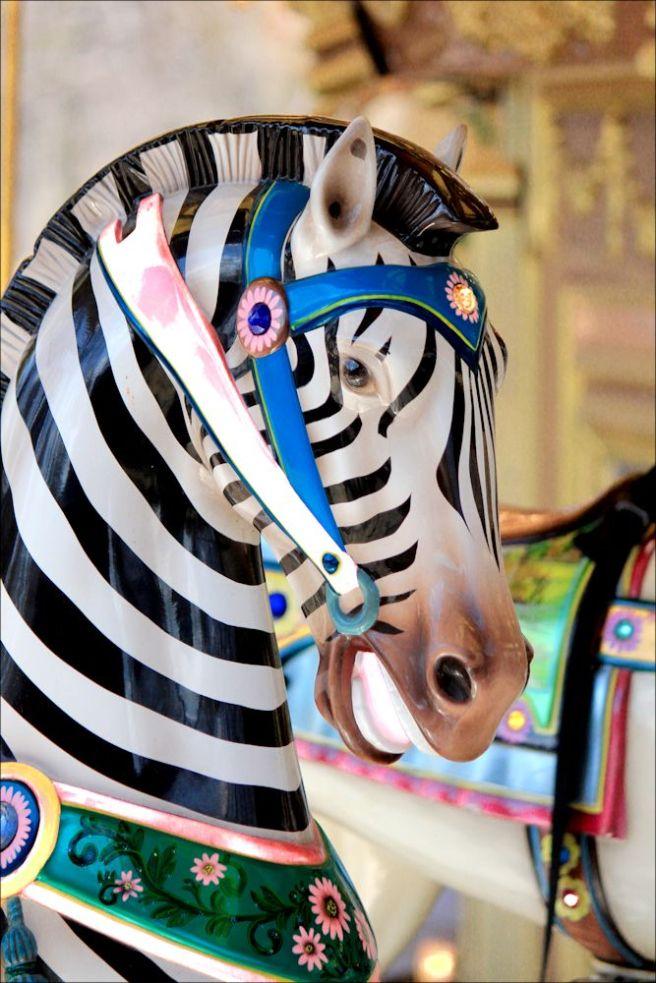 zebra1©Virginia Spencer, thepurpledogpaintingblog, 2013