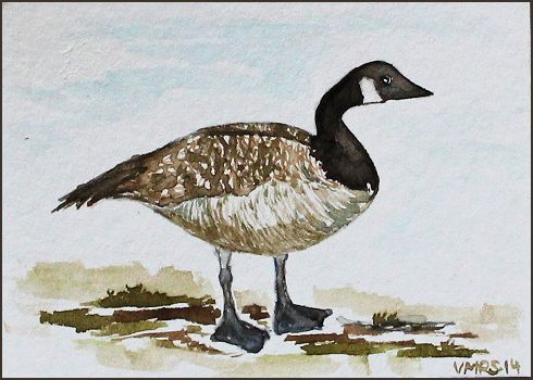goose1©Virginia Spencer, thepurpledogpaintingblog, 2014