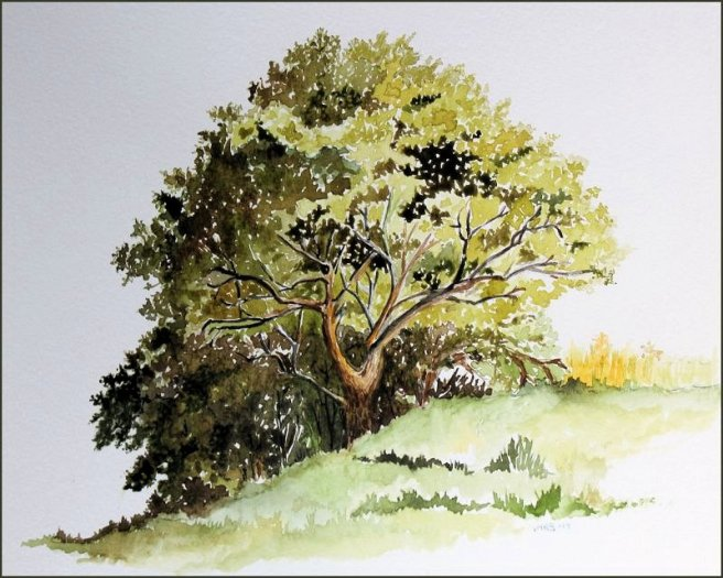 watercolor tree blog art