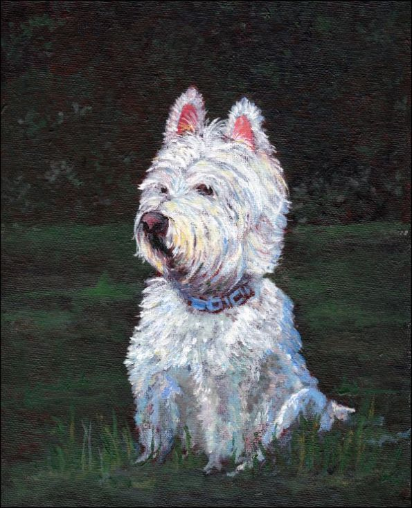 Westie_painting_dog