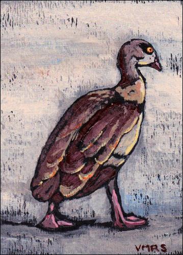 duckatc