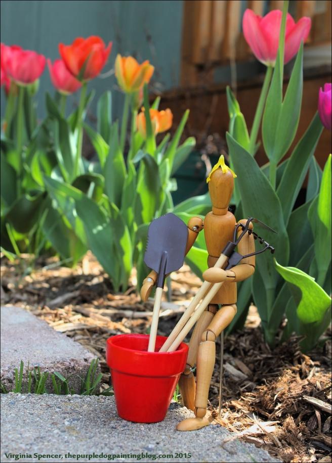 tulips_dummy