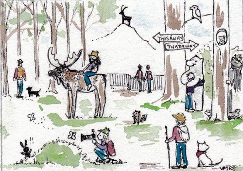 blog hiking trail moose