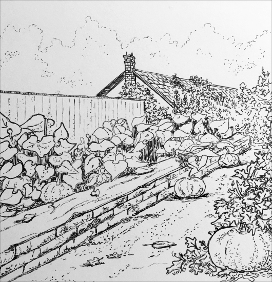 pumpkin-garden-art-ink